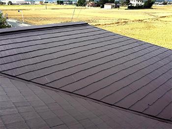 カビとコケの多かったコロニアル屋根を塗装で保護させていただきました。